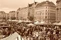 50. Place | Halbmarathon | nowayout (1131) | Samstags in Wien