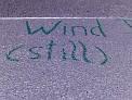 397. Place | Marathon | Bernadette K. (1214) | Wind(still)