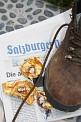 320. Platz | Marathon | CAOS+SYSTEM (1219) | Salzburgs Spuren in Wien