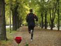 53. Platz | Halbmarathon | Markus W. (1373) | Samstags in Wien