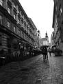 110. Place | Marathon | Tina D. (184) | Altstadt
