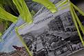 429. Platz | Halbmarathon | Sandra L. (199) | Am Naschmarkt