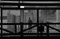 445. Place | Halbmarathon | Michael D. (204) | hinter Gittern