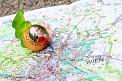 283. Platz | Marathon | Patrick S. (224) | Salzburgs Spuren in Wien