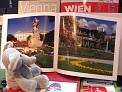 303. Platz | Marathon | Heidi M. (666) | Salzburgs Spuren in Wien