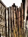 29. Place | Marathon | Ewald S. (753) | hölzern (aus Holz)