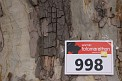 301. Platz - Bettina K. (998)