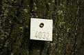 408. Place | Halbmarathon | Elisabeth S. (104) | unbekannt, aber sehenswert