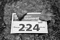 135. Place - Picwish (224)