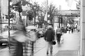 329. Place | Halbmarathon | Die Manumans (285) | an der Ringstrasse