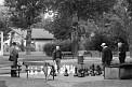 83. Place | Marathon | Armin S. (334) | typisch Wien(erisch)