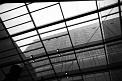 279. Place | Marathon | Die 3 (528) | außergewöhnliche Architektur