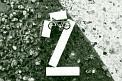 322. Platz | Marathon | Momo H. (538) | Drahtesel