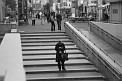 238. Place | Halbmarathon | ArPhoto (762) | Ich wohne in der Stadt