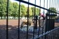 198. Place | Marathon | anita.z (1015) | mehr Menschlichkeit für Tiere