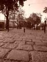 Gabriele Amina R. (1206) - ∅ 5.00