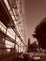336. Place - Gabriele Amina R. (1206)