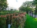 639. Place | Halbmarathon | Hide & Seek (1271) | im Burggarten