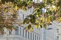 331. Place | Marathon | Andrea P. (1309) | herbstliches Wien