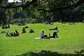 625. Place | Halbmarathon | Team Thaller (1332) | im Burggarten