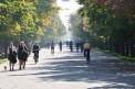 633. Platz | Halbmarathon | Alexander K. (1359) | morgens in Wien