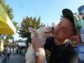 271. Platz | Halbmarathon | Petra M. (1370) | mehr Menschlichkeit für Tiere