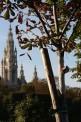 368. Place | Halbmarathon | Cube (1382) | herbstliches Wien