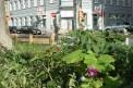 340. Place | Marathon | Angelika W. (175) | morgens in Wien