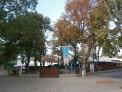 282. Place | Marathon | meiser eder (299) | morgens in Wien