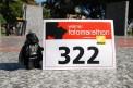 296. Platz - Lykke (322)