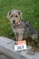 241. Platz - Daniela P. (361)