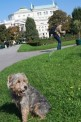 241. Place | Marathon | Daniela P. (361) | im Burggarten