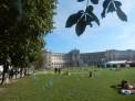 343. Place | Halbmarathon | Andrea H. (374) | herbstliches Wien