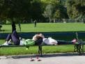 121. Platz | Marathon | Franz L. (380) | im Burggarten