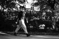18. Place | Jugendbewerb | Yasemin G. (421) | mehr Menschlichkeit für Tiere