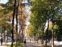 522. Place | Halbmarathon | Michael S. (444) | herbstliches Wien