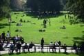 571. Place | Halbmarathon | Clemens K. (454) | im Burggarten