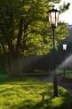 291. Place | Halbmarathon | Zaneta C. (474) | im Burggarten