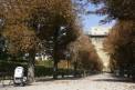 148. Place | Halbmarathon | maurus (511) | herbstliches Wien