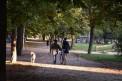 388. Place | Halbmarathon | Elli T. (524) | mehr Menschlichkeit für Tiere
