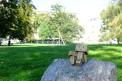 331. Platz | Marathon | erwinmacho photography (589) | im Burggarten