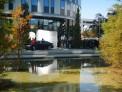 453. Place | Halbmarathon | Wuzi1 (609) | im Burggarten
