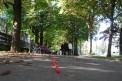 107. Platz | Halbmarathon | Oliver F. (621) | im Burggarten