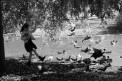 59. Place | Jugendbewerb | Michael K. (748) | mehr Menschlichkeit für Tiere