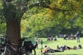 586. Place | Halbmarathon | Mark D. (761) | im Burggarten