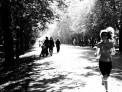 60. Place | Marathon | akiramfoto (782) | morgens in Wien