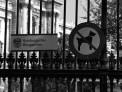 205. Place | Marathon | Chris Wiesner (885) | im Burggarten