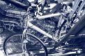 111. Place | Marathon | Momo H. (1078) | ausgedient