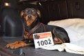 107. Platz - Melissa B. (1002)