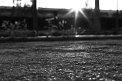 146. Place | Halbmarathon | Konrad Z. (1008) | am Boden